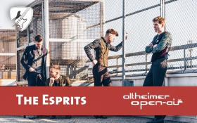 The Esprits beim 26. Altheimer Open-Air